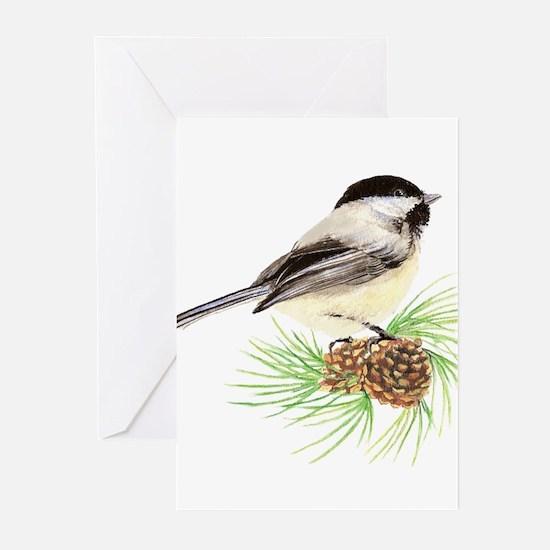 Chickadee Bird on Pine Branch Greeting Cards