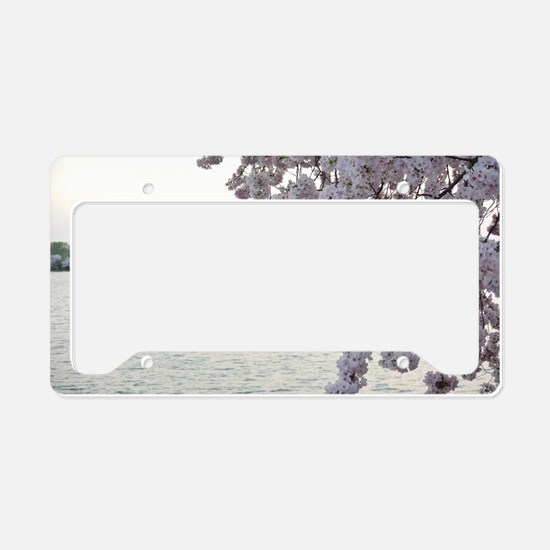 Cherry Blossoms License Plate Holder