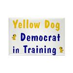 Yellow Dog Democrat Rectangle Magnet (100 pack)