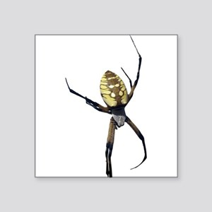 Yellow Banana Spider Sticker