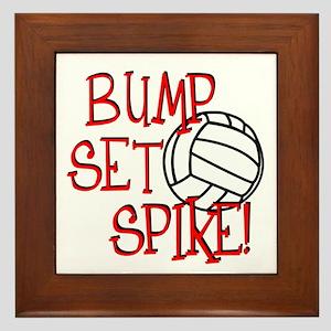 Bump, Set, Spike Framed Tile