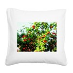 Apple tree Square Canvas Pillow