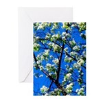 Snow Flowers Greeting Cards