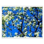Snow Flowers Posters