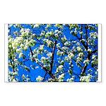 Snow Flowers Sticker