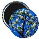 Snow Flowers Magnets