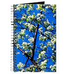 Snow Flowers Journal