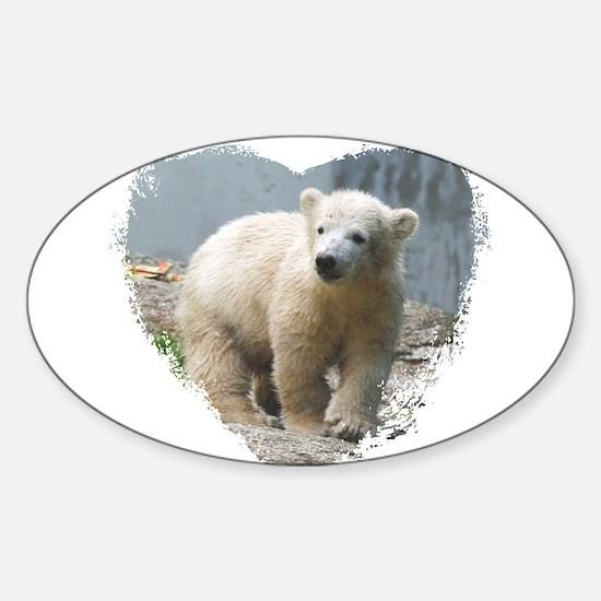 Cute Polar bear photo Sticker (Oval)