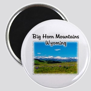 Panoramic Big Horn Mountains Magnet Magnets