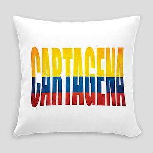 Cartagena Everyday Pillow