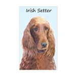 Irish Setter Sticker (Rectangle)