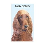 Irish Setter Sticker (Rectangle 50 pk)
