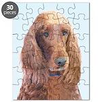 Irish Setter Puzzle