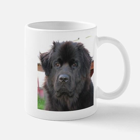 newfie 2 Mugs