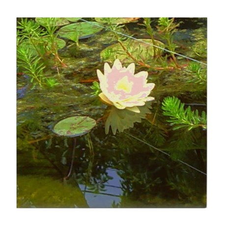 Water Lily Tile Coaster