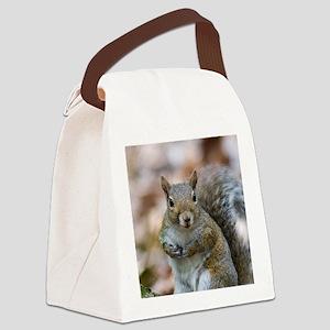 Cute Squirrel Canvas Lunch Bag