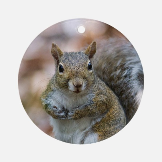 Cute Squirrel Round Ornament