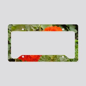 Orange Geranium  License Plate Holder