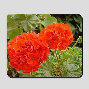 Orange Geranium  Mousepad