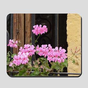 Geranium in the Window Mousepad