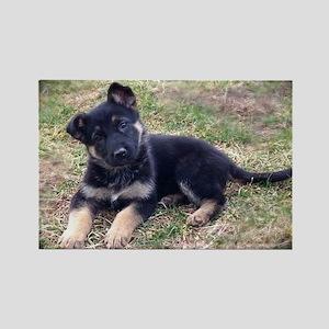 German Shepherd Pup Magnets
