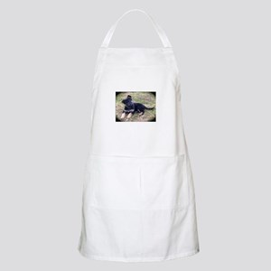 German Shepherd Pup Apron