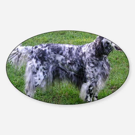 English Setter full Decal