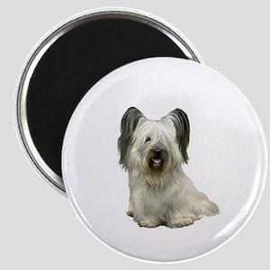 Skye Terrier (lt) Magnet