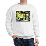 sunlitbridge Sweater