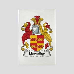 Llewellyn (Wales) Rectangle Magnet