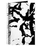Group acrobatics Journal