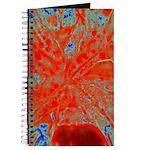 Action flower Journal