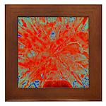 Action flower Framed Tile