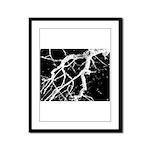 Night creatures Framed Panel Print