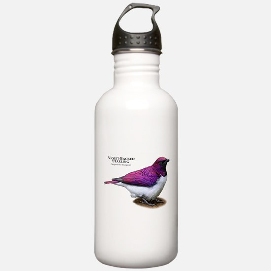 Violet-Backed Starling Water Bottle