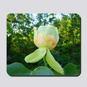 Tulips Grow on Trees Mousepad