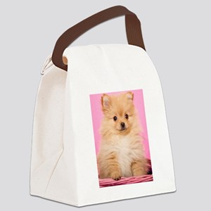 Butterscotch in Pink Canvas Lunch Bag