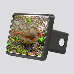 Sweet Cardinal Hitch Cover