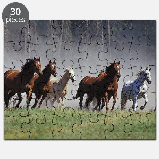 Galloping Horses Puzzle