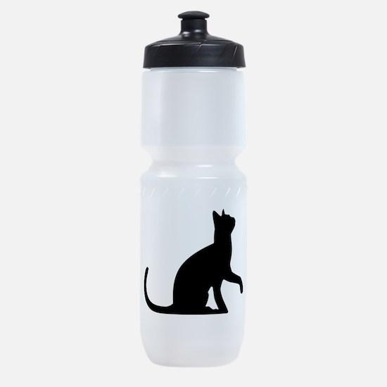 Cat Sitting Sports Bottle