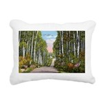 Echo Trail Ely Minnesota Rectangular Canvas Pi