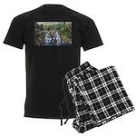 Gooseberry Falls Men's Dark Pajamas