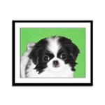 Japanese Chin Framed Panel Print