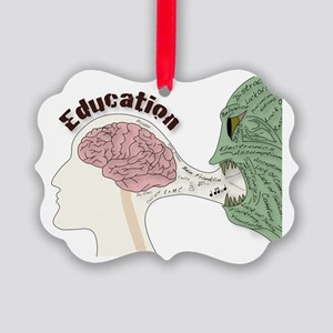 Education Distraction Picture Ornament
