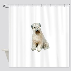Wheaten Terrier (8) - sit Shower Curtain