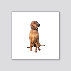 "Red Bone Coon Hound Square Sticker 3"" x 3"""