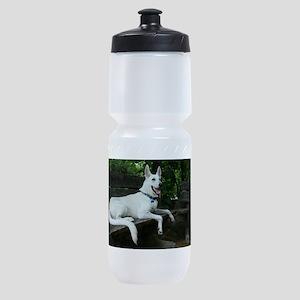 White Shepherd On A Park Bench Sports Bottle