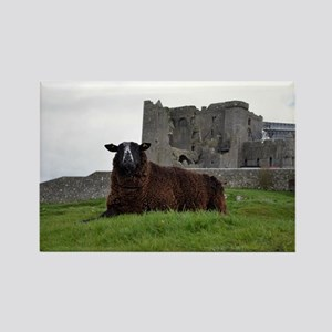 Sheep in Front of Rock of Cashel Rectangle Magnet