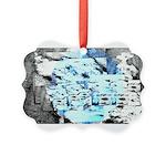 Freezing Ornament