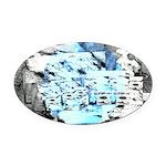 Freezing Oval Car Magnet